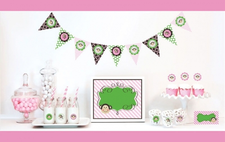 Pink Monkey Decorations Starter Kit